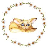 Watercolor wreath with chamomile and fox on a white background. stock illustration