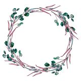 Watercolor wreath of different eucalyptus branches royalty free illustration
