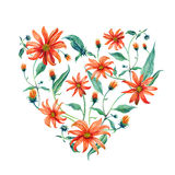 Watercolor wreath heart-shaped. Red daisies. Royalty Free Stock Photography