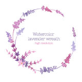 Watercolor wreath of lavender Stock Photography