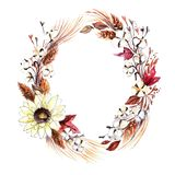 Watercolor Wreath made of Cotton Plant Bolls royalty free illustration