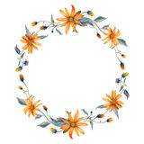 Watercolor wreath. Orange daisies with leaves Stock Image