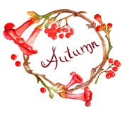 Watercolor wreath with red flowers and cranberries. Watercolor decorative wreath with red flowers and cranberries Royalty Free Illustration