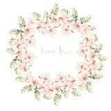 Beautiful Watercolor wreath with spring flowers and eucalyptus leaves. Illustration vector illustration
