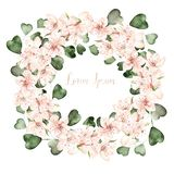 Beautiful Watercolor wreath with spring flowers and eucalyptus leaves. Illustration royalty free illustration