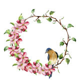 Watercolor wreath with tree branches, apple blossom and bird. Hand painted floral illustration isolated on white Royalty Free Stock Images