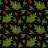 Watercolor xmas pattern with fir branches and red berries. Watercolor Christmas pattern with fir branches and red berries isolated on black background Royalty Free Stock Image