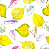 Watercolor yellow autumn leaves and feathers. Repeated pattern. Yellow autumn leaves and feathers. Repeated pattern. Watercolor stock illustration