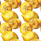 Watercolor yellow lemon citrus fruit seamless pattern background texture Royalty Free Stock Photo