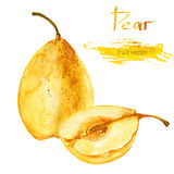 Watercolor yellow pear, half of pear hand drawn  illustration isolated on white background, tropical fruit, food element for Stock Photo