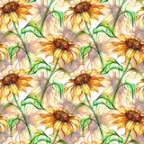 Watercolor yellow sunflower flower seamless pattern background.  Stock Images
