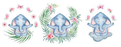 Watercolor yoga elephant in lotus position with flowers on the cloud cute hand drawn illustration. Watercolor yoga elephant in lotus position with flowers on the royalty free illustration