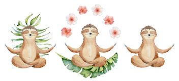 Watercolor yoga sloths set in lotus position with flowers cute hand drawn illustration