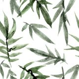 Watercolorand ink painted green leaves of bamboo Royalty Free Illustration