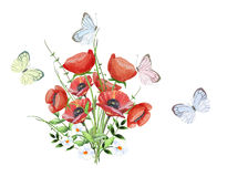 Watercolorbouquet of poppies with butterflies Stock Photos