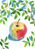 Watercolour apple Stock Photo