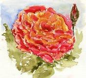 Watercolour-Blume stockfotografie