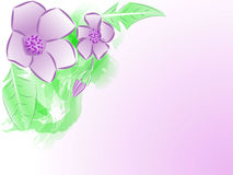 Watercolour-Blumen, Einladungs-Karte Lizenzfreie Stockfotografie
