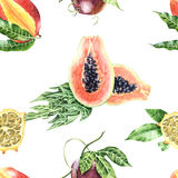 Watercolour botanical illustration tropical fruits seamless patt Stock Image