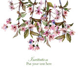 Watercolour cherry blossom greeting Stock Images