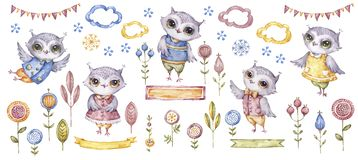 Watercolour cute owls. Watercolor cute animals birds and ethnic flowers. Cartoon characters clip art. Design for any stock images