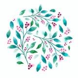 Watercolour floral del vector Imagenes de archivo