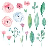 Watercolour floral set of floral elements in pastel colors. Hand-drawn pink flowers, green leaves for bouquets, wreaths, wedding