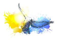 Watercolour go??bek ptaki lata, colourful wektorowy obraz ptasi ptak?w lota sylwetki niebo ilustracji