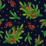 Watercolour hand painted seamless Christmas background. Watercolor Christmas pattern with fir branches and red berries isolated on black background, watercolour Royalty Free Stock Photos