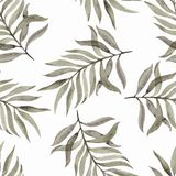 Watercolour hand painted. Seamless pattern with leaves on a white background. Beautiful design for wallpapers, textiles, fabrics royalty free stock photography