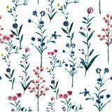 Watercolour ilustracyjny kwiecisty wzór, delikatni kwiaty, Zdjęcia Stock