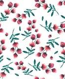 Watercolour ilustracyjny kwiecisty wzór, delikatni kwiaty, yello Obrazy Royalty Free