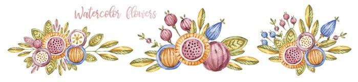 Watercolour kwiatu skład, set na bielu ilustracja wektor