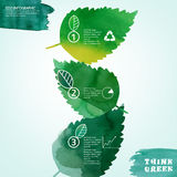 Watercolour leaves infographic Stock Image