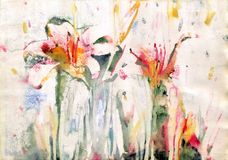 Painting lily flowers royalty free stock images