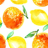 Watercolour lime and lemon fruit illustration.  Royalty Free Stock Image