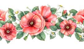 Watercolour naadloze grens met papaver, kamille en bladeren Hand getrokken botanische illustratie vector illustratie