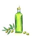 Watercolour Olive Oil y rama Fotografía de archivo libre de regalías