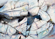 A watercolour painting of a coastal rock pool stock illustration