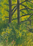Watercolour painting of trees and bushes. In sunlight royalty free stock photography