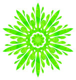 Watercolour pattern - Light green abstract flower Royalty Free Stock Photo
