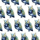 Watercolour sowy rozkazu błękitny bezszwowy wzór na bielu Zdjęcia Stock