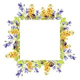 Watercolour square frame of eremurus, bluebells, leaves, purple violets royalty free stock image