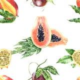 Watercolour tropikalnych owoc botaniczny ilustracyjny bezszwowy patt royalty ilustracja