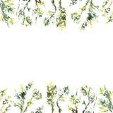 Watercolour vierkant kader van brunches en bladeren royalty-vrije illustratie