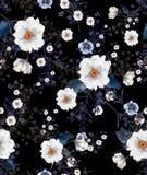 Watercolourillustrationswildes blühendes Blumenmuster, empfindlich lizenzfreie abbildung
