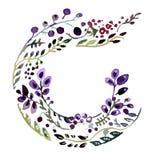 Watercolr alphabet letter c. Floral frame. Watercolr alphabet letter c. Watercolor floral frame vector illustration