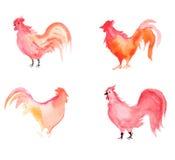 Watercolur-Satz von vier mit einem Hahn Lizenzfreie Stockfotos