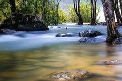watercourse Fotografia Royalty Free