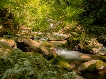 Watercourse hidden and protected from wild vegetation. Small stream of water immersed in wild nature and protected by mossy rocks and plants of a lush green Stock Photography